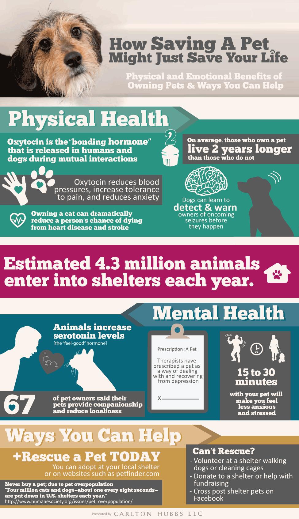 Saving A Pet Might Just Save Your Life