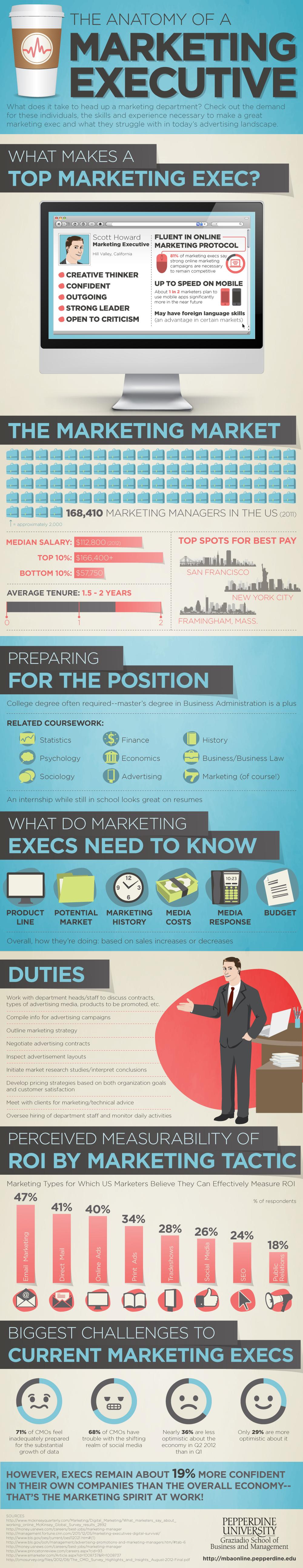 Anatomy of a Marketing Executive