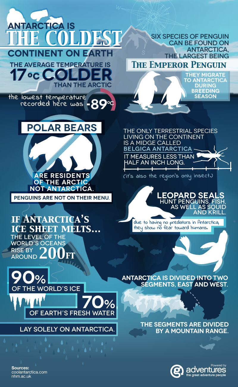 Antarctica Fun Facts