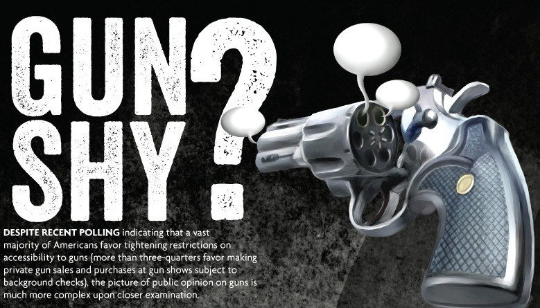 Gun Shy? A Look at Public Opinion Ownership