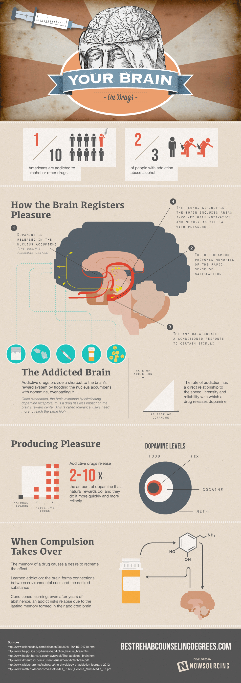 Your Brain On Drugs