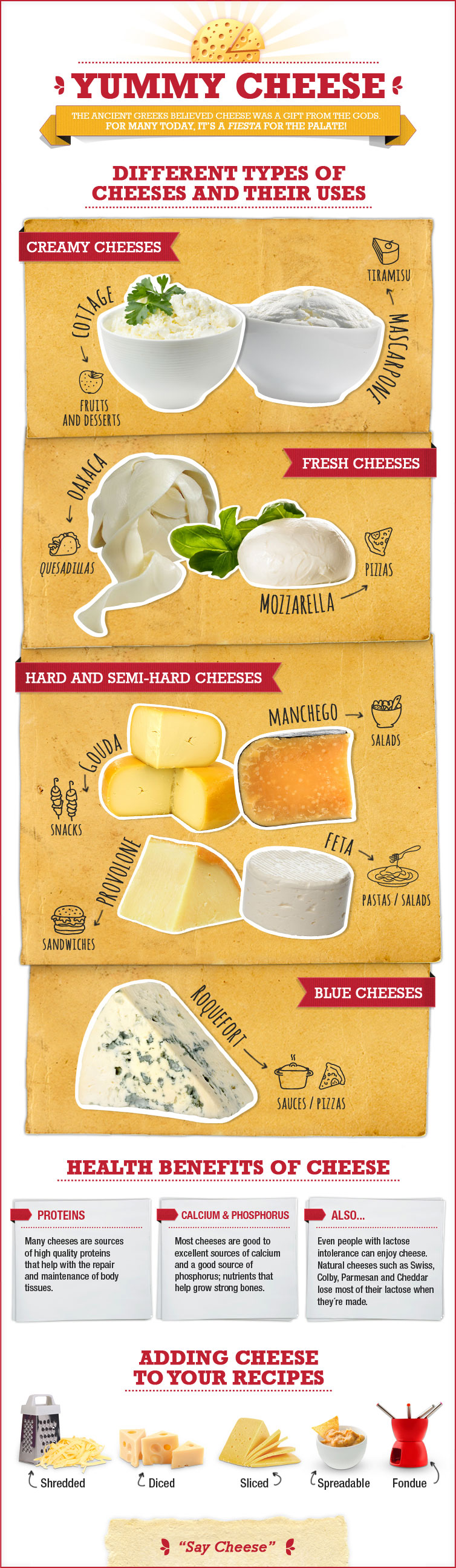 A Cheese Course: The Basic Types and Uses of Cheese