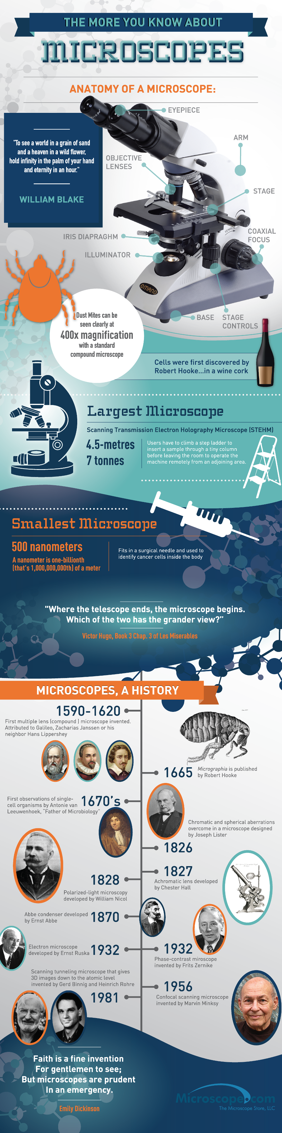 Anatomy Of The Microscope [Infographic]