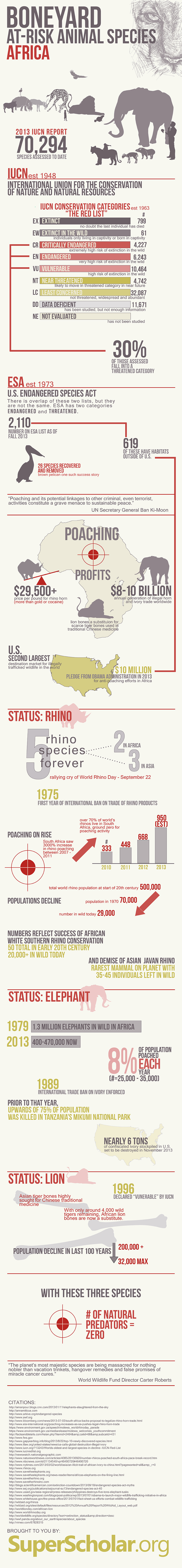 How Poaching Has affected the African Wildlife