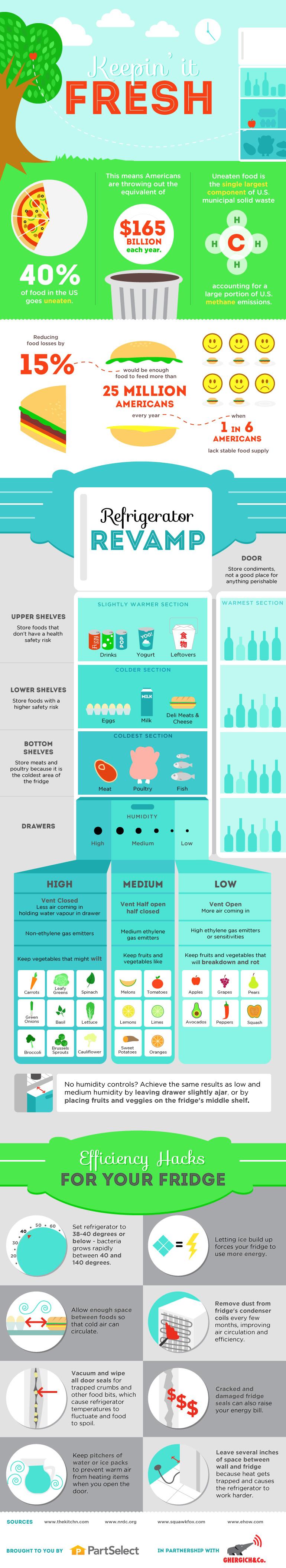Keepin' it Fresh: Refrigerator Revamp Guide