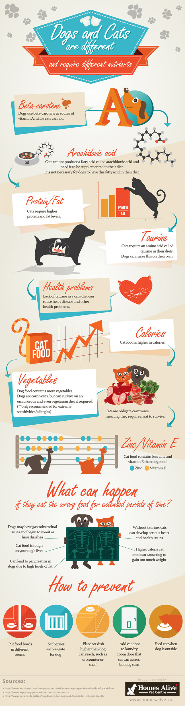 Differences Between Dog & Cat Foods