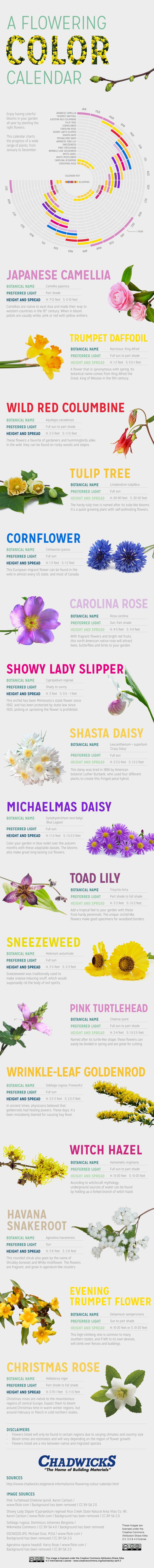 Flowering Color Calendar (US Version)