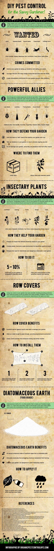 DIY Pest Control for the Savvy Gardener
