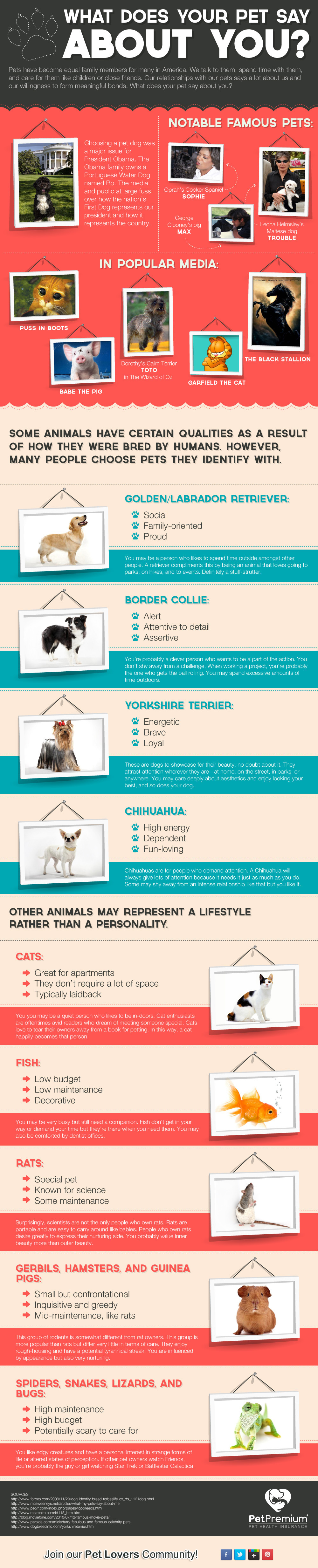 What Does Your Pet Say About You?