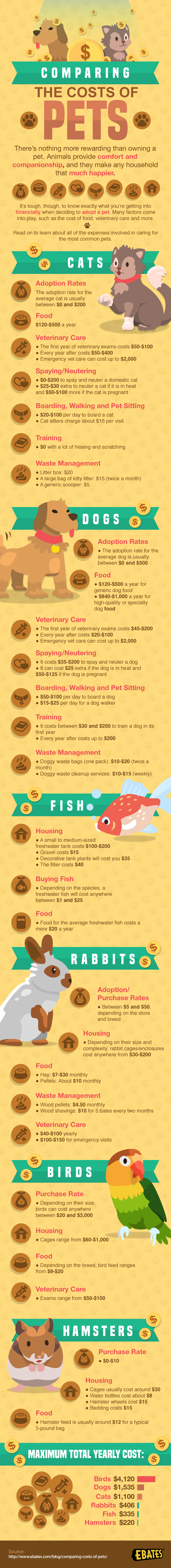 Comparing the Costs of Pets