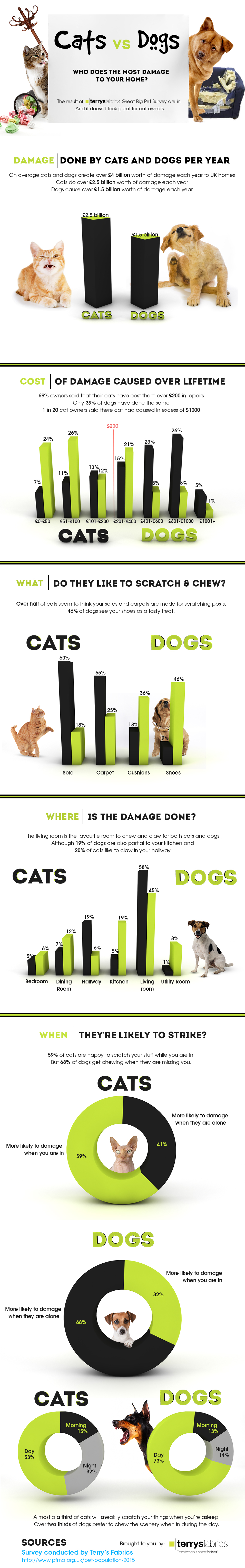 Cats vs Dogs: Who Does the Most Damage?