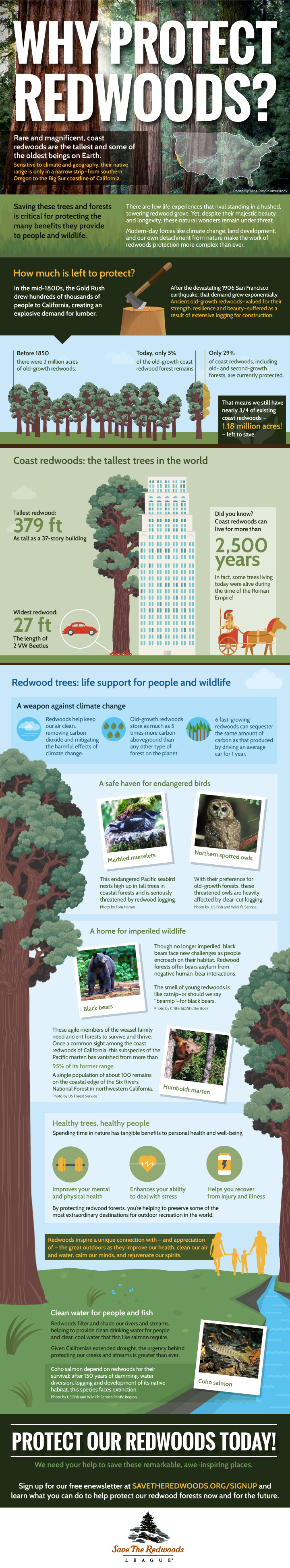 Why Protect Redwoods