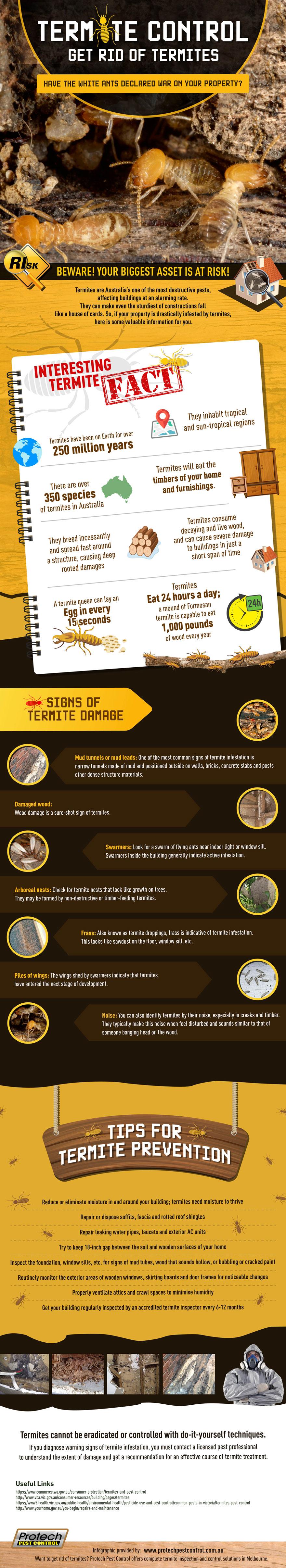 Termite Control: Get Rid of Termites