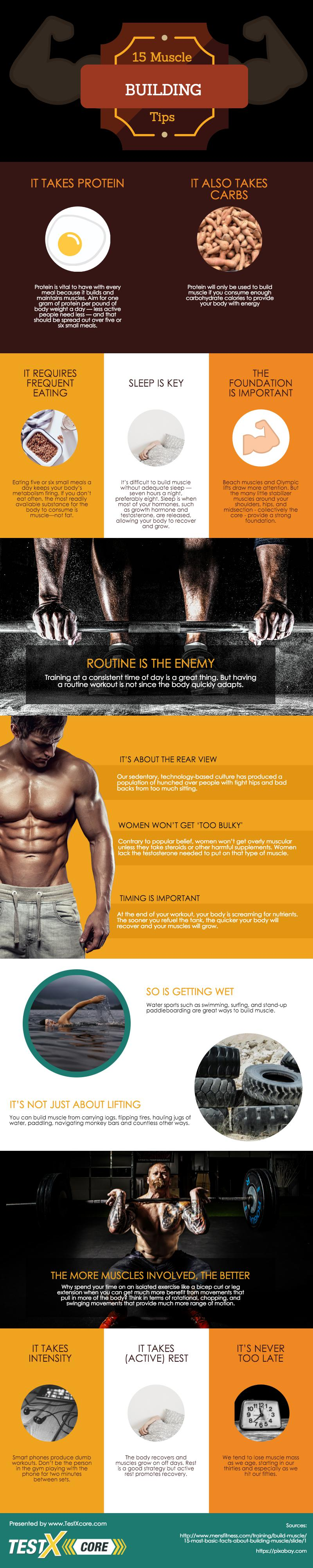 15 Muscle Building Tips