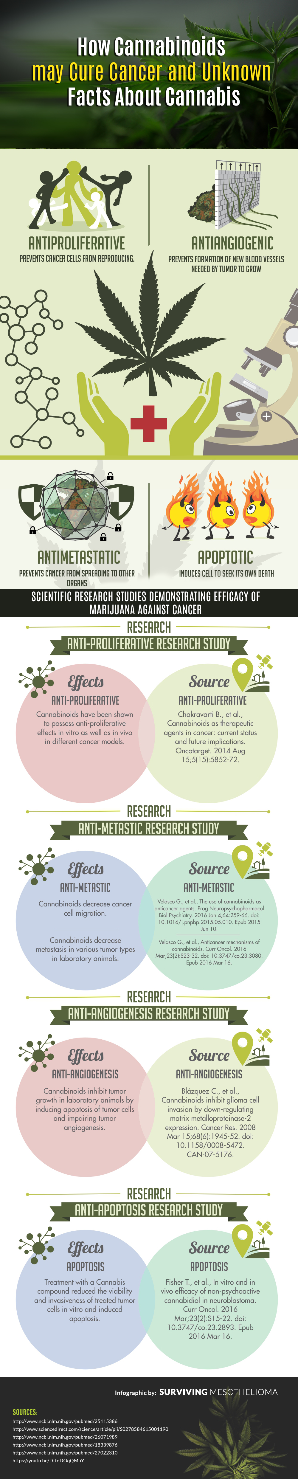 How Cannabis May Cure Cancer