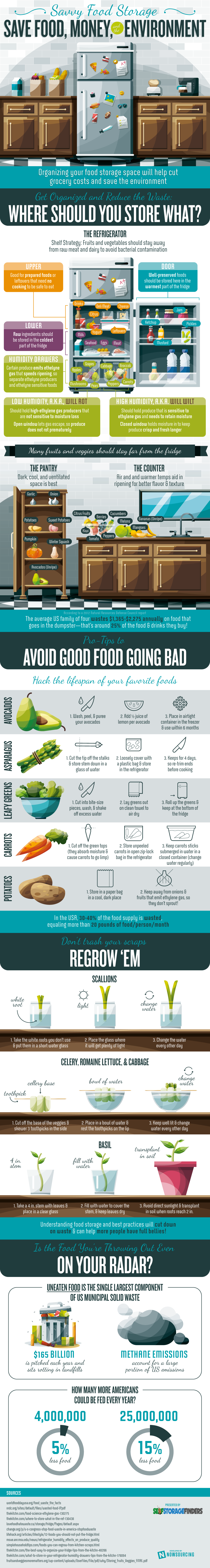 Savvy Food Storage Save Food Money And The Environment  sc 1 st  Infographic Journal & Savvy Food Storage: Save Food Money And The Environment [Infographic]