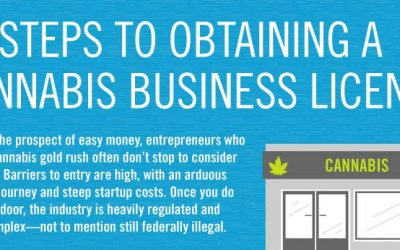 11 Steps To Obtaining A Cannabis Business License