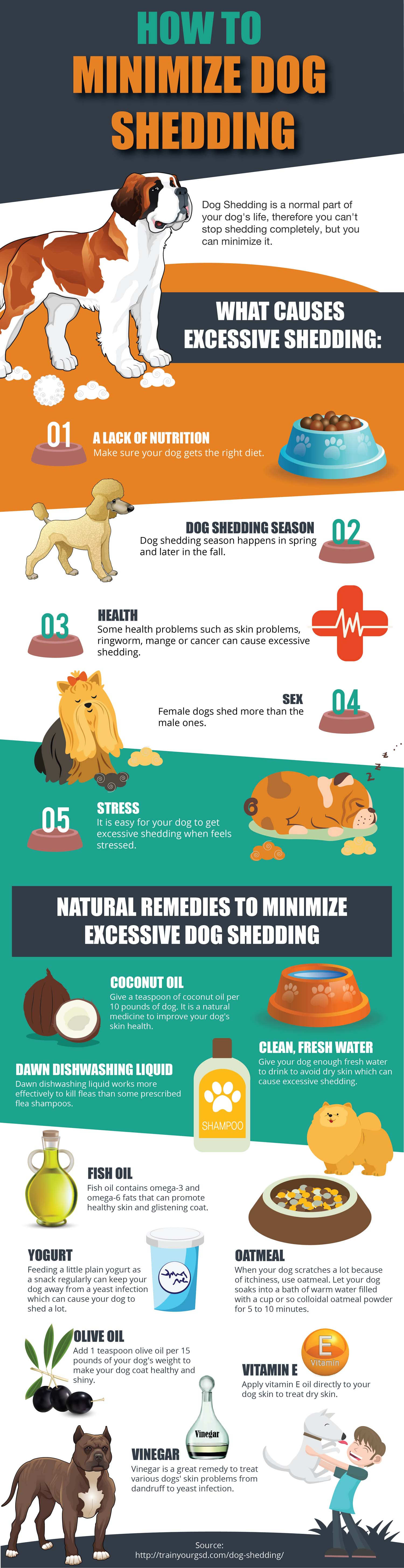 How to Stop and Minimize Dog Shedding