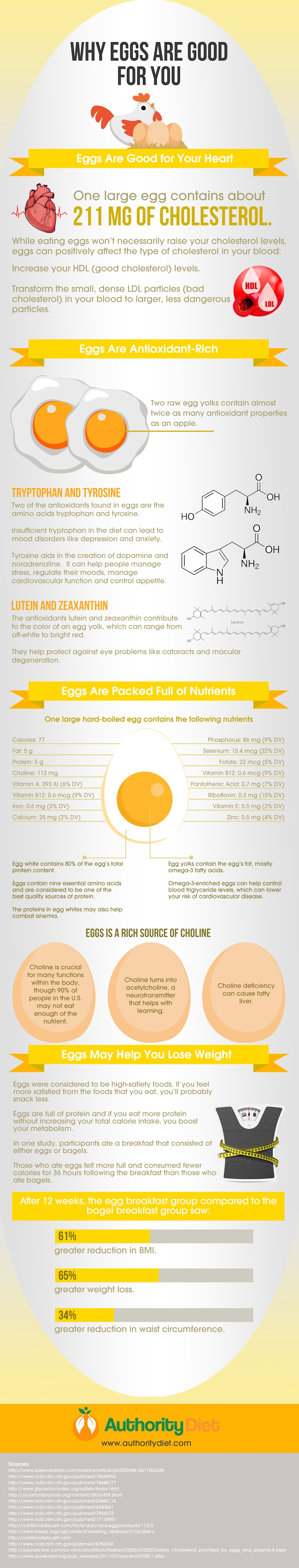 Are Eggs Good or Bad for You?