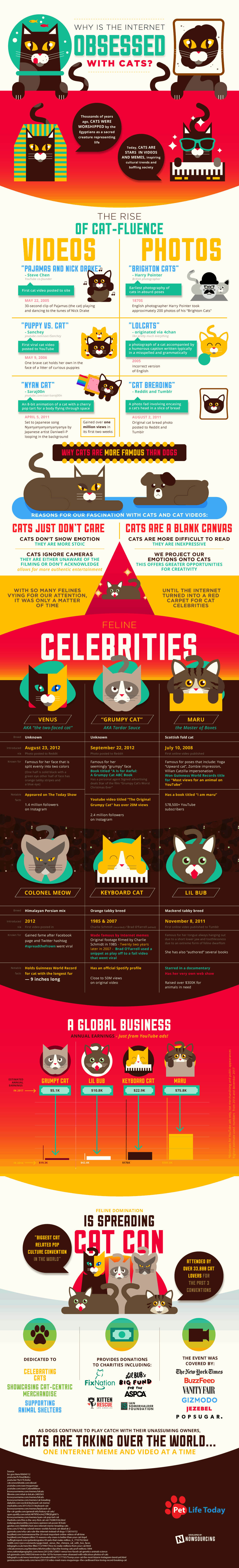 Why is the Internet Obsessed With Cats?