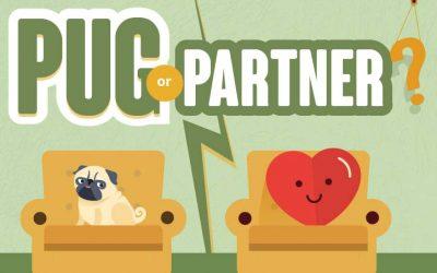 Pug Or Partner?