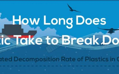 How Long Does It Take Plastic To Break Down In The Ocean?