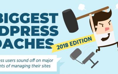 The Biggest WordPress Headaches of 2018