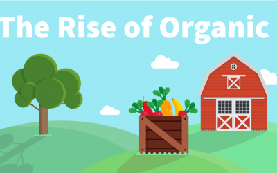 The Rise of Organic