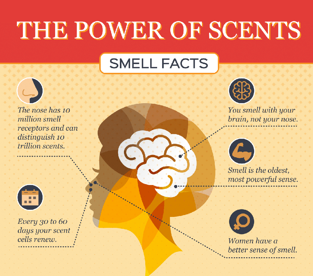 The Power of Scent forecasting