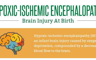 Hypoxic-ischemic Encephalopathy: Brain Injury at Birth
