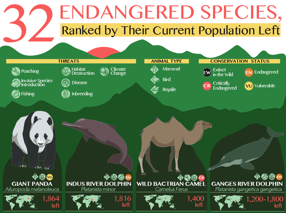 32 Endangered Species, Ranked by Their Current Population Left