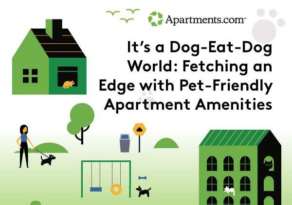 Fetching an Edge With Pet-Friendly Apartment Amenities