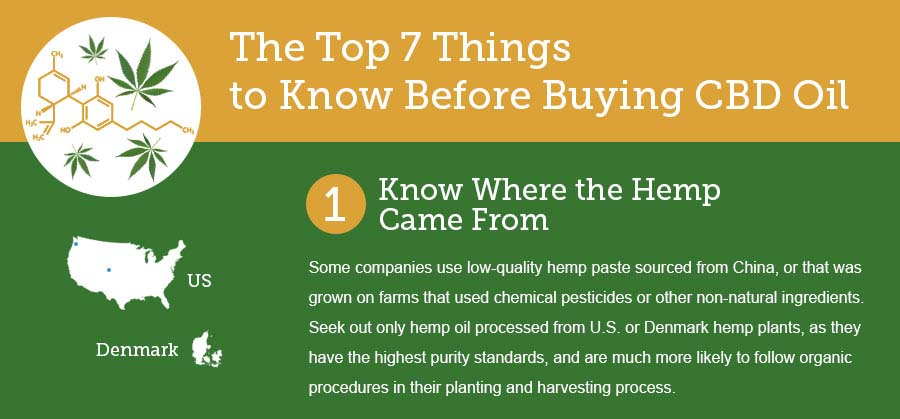 The Top 7 Things to Know Before Ordering CBD Oil