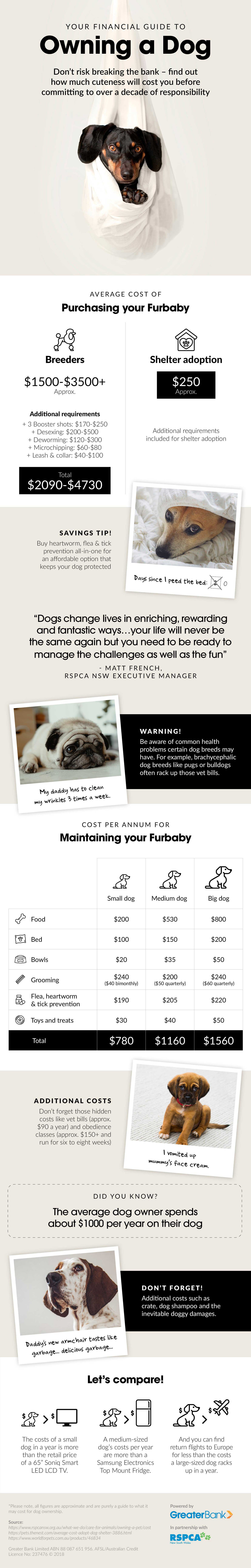 A Financial Guide to Owning a Dog