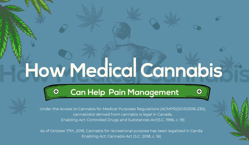 How Medical Cannabis Can Help Pain Management