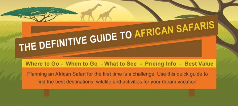 The Definitive Guide to African Safaris