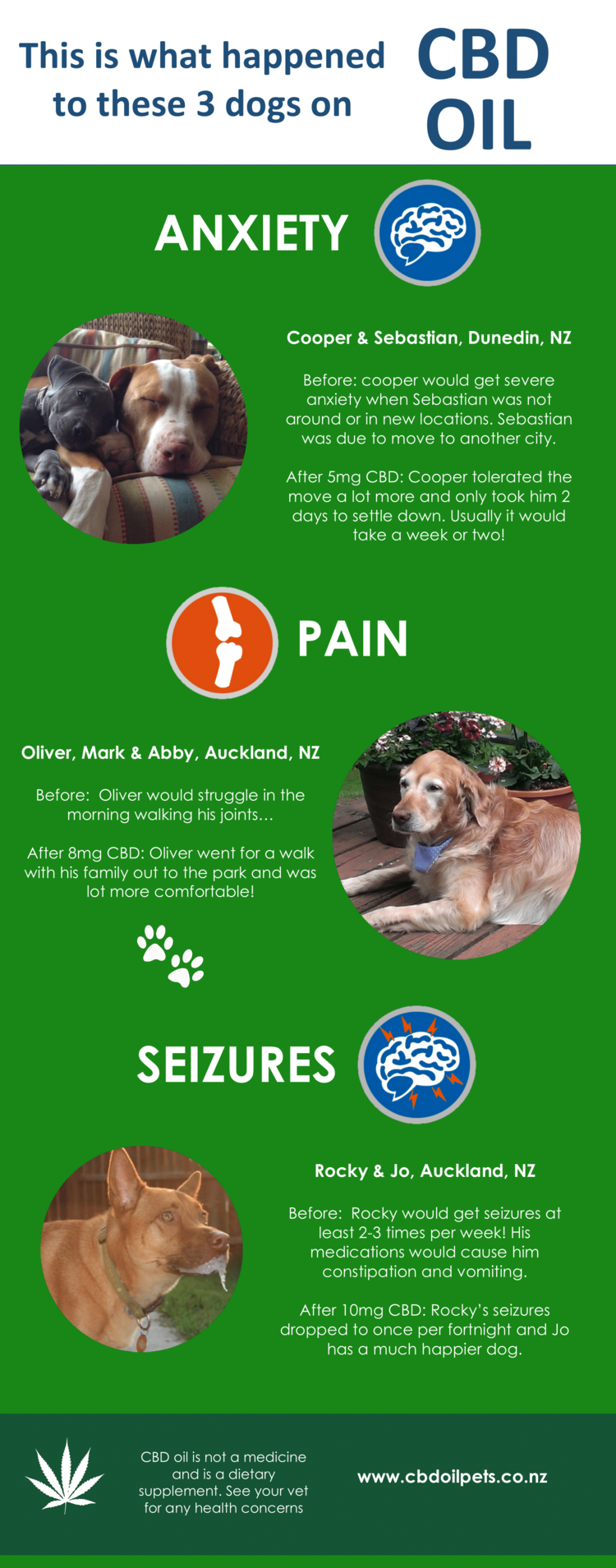 What CBD Oil Did For 3 Dogs