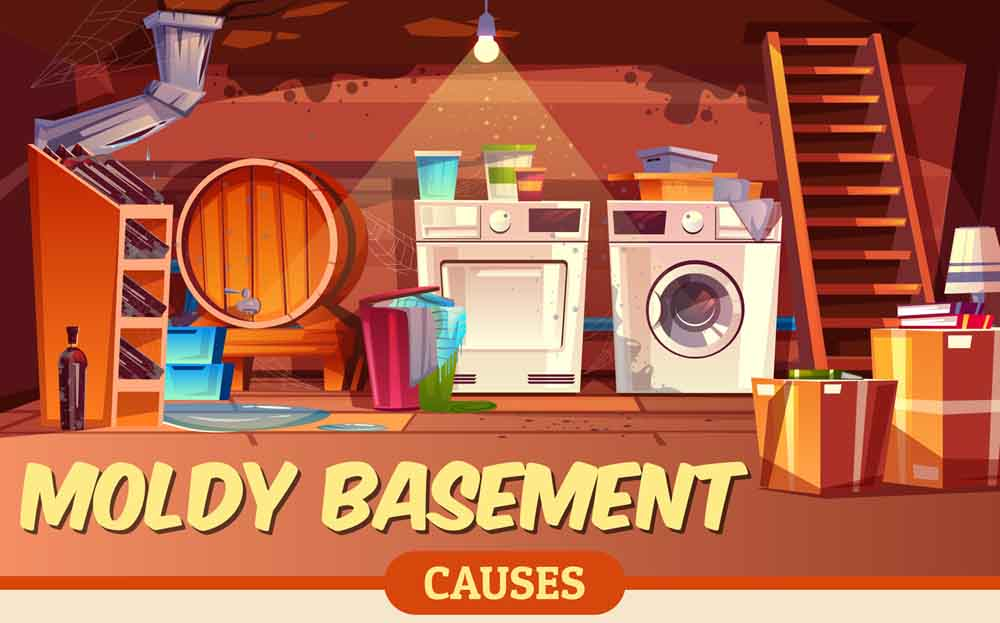 Moldy Basement Causes