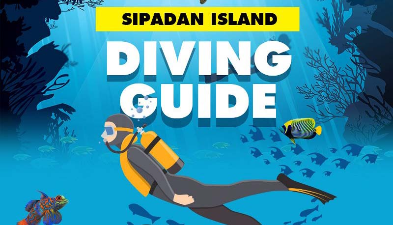 Sipadan Island Diving Guide