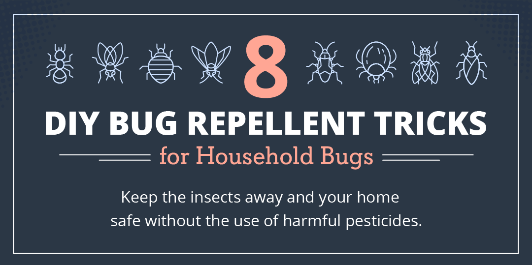 DIY Bug Repellent Tricks for Common Household Bugs