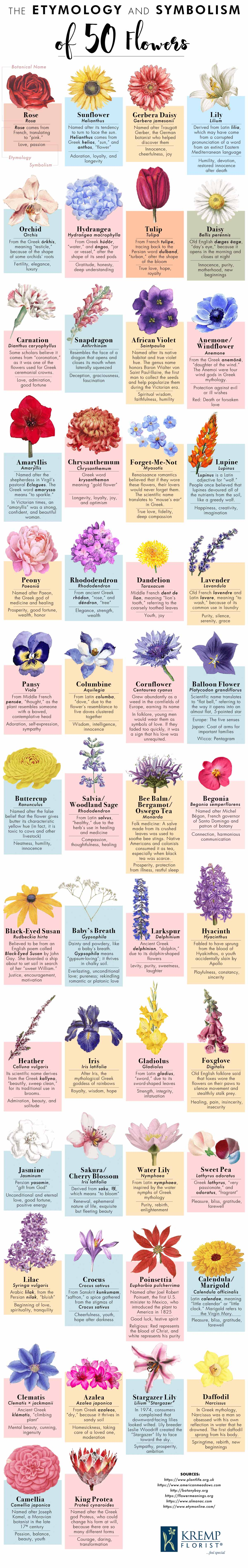 The Etymology and Symbolism of 50 Flowers