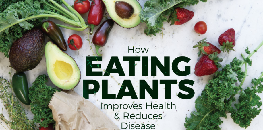 Eat Plants, Feel Whole: The Plant-Based Diet