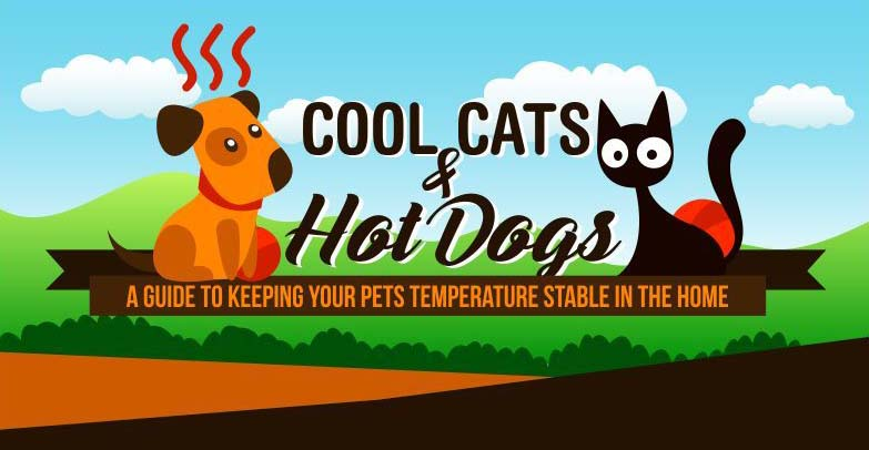 Cool Cats & Hot Dogs: A Guide to Keeping Your Pets Temperature Stable in the Home
