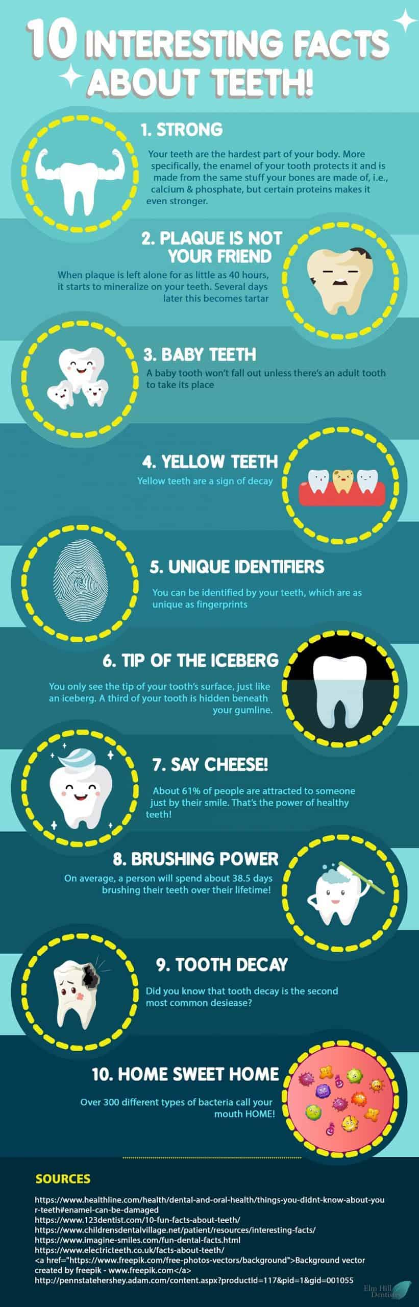 10 Interesting Facts About Your Teeth That You Didn't Know