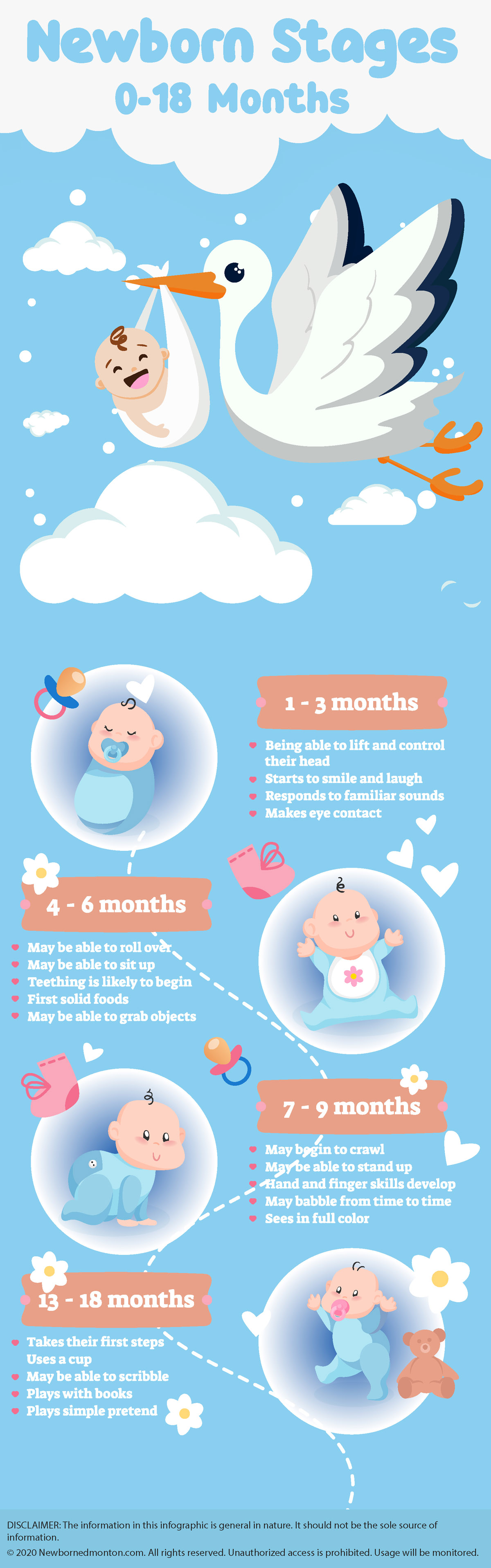 What Are Newborn Stages is Newborn Photography Safe?