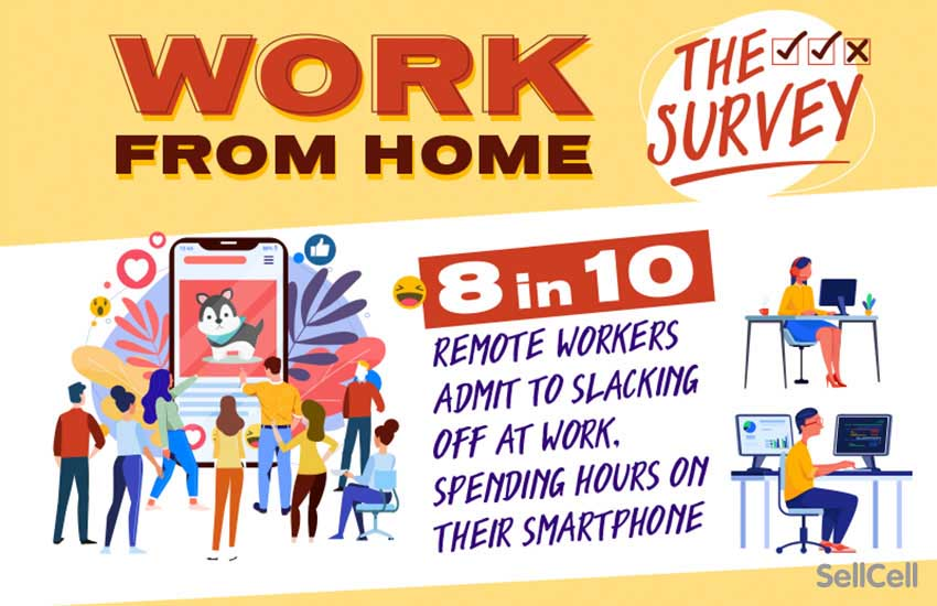 Work From Home: The Survey