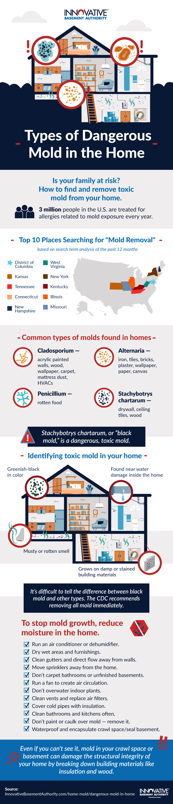 Different Types of Dangerous Mold in Our Homes