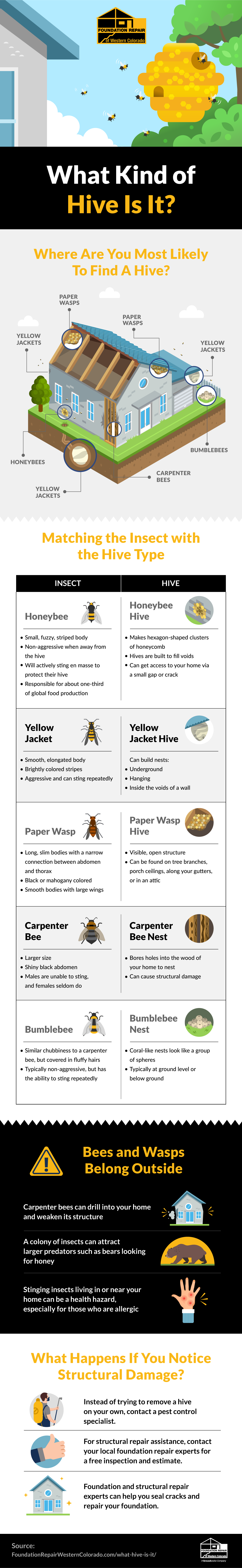 Removing Bee and Wasp Hives From Your Home