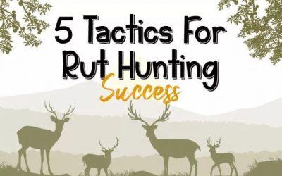 5 Tactics For Rut Hunting Success