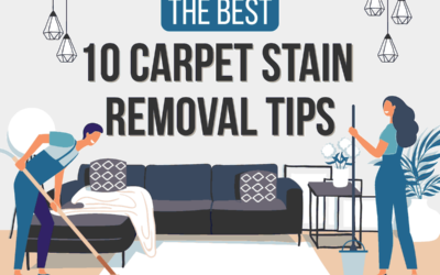 The Best 10 Carpet Stain Removal Tips